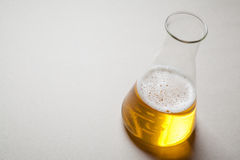 Beer and chemistry Stock Image