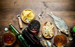 Beer with chips and squid rings in bowl and dried fish royalty free stock photography