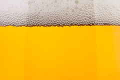 Beer clear level closeup Stock Image