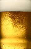 Beer close-up. A close-up picture of a glass of beer with oam Royalty Free Stock Image