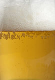 Beer close-up Royalty Free Stock Photo