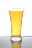 Beer. Stock Images