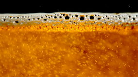 Beer. Close up of pouring beer in mug stock footage