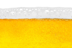 Beer close-up Stock Photography