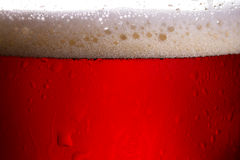 Beer close up studio photography in back light. Stock Photography
