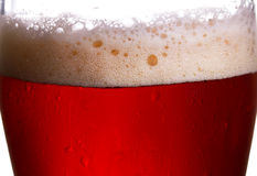 Beer close up studio photography in back light. Stock Image