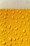 Beer closeup 1. Fresh glass of pils beer with froth and condensed water drops Stock Photo