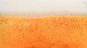 Beer closeup Stock Images