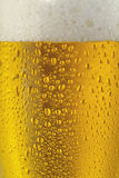 Beer closeup. Fresh glass of pils beer with froth and condensed water pearls. Beautiful golden color Stock Photo