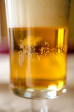 Beer closeup Royalty Free Stock Photo