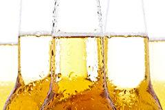 Beer closeup on white. Beer bottles with water droplets closeup on white Stock Image