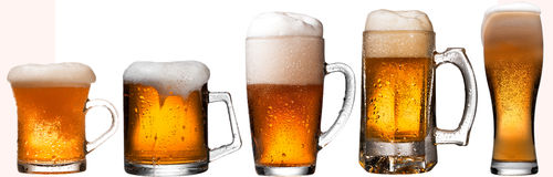 Beer collage, isolated on white Stock Image