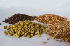 The beer components over a white background royalty free stock image