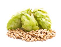 Beer concept Stock Photography