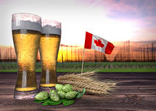 Beer consumption in Canada. 3D render. Concept of beer consumption in Canada - 3D render Royalty Free Stock Images