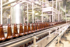 Beer conveyor Royalty Free Stock Photo