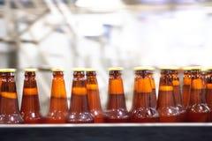 Beer conveyor Stock Image