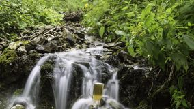 Beer cooled in waterfall spring stock video