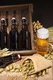 Beer crate with beer glass Royalty Free Stock Image