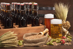 Beer crate with beer glasses. Beer crate with different beers, hops, wheat, grain, barley and malt Stock Images