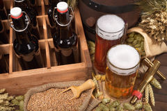 Beer crate with beer glasses Royalty Free Stock Images