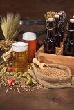 Beer crate with beer glasses. Beer crate with different beers, hops, wheat, grain, barley and malt Royalty Free Stock Photo