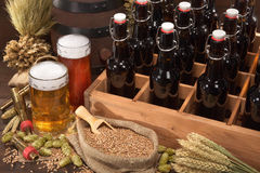 Beer crate with beer glasses Royalty Free Stock Photos
