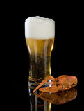 Beer And Crawfish. Mug of beer and boiled crawfish on a black glass bakground Royalty Free Stock Photos