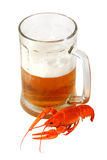 Beer and crawfish Stock Photography