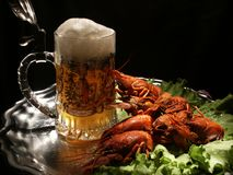 Beer and crawfish stock images
