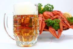 Beer with crayfish Stock Photos
