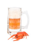 Beer with crayfish Royalty Free Stock Image