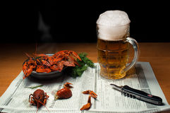 Beer with crayfish Royalty Free Stock Images