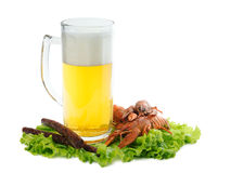 Beer with crayfish and sausages. Foamy beer with red crayfish and greasy sausages Stock Image