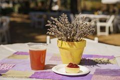 Lavender Festival at 123 Farm. Beer and dessert on table of Lavender Festival of 123 Farm at San Bernardino, Los Angeles County, United States Royalty Free Stock Image