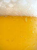 Beer detail. Detail shot of a glass of beer stock photography