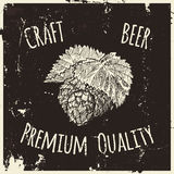 Beer. Drawing by hand. Royalty Free Stock Images