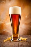 Beer drink Stock Photography