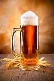 Beer drink Royalty Free Stock Photo