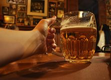 Beer. Drinking beer in the bar Royalty Free Stock Image