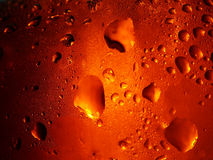 Beer Droplets. Macro of droplets on cold bottled beer Stock Photos