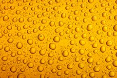 Beer droplets closeup. May be ideal as a background or effect Stock Images