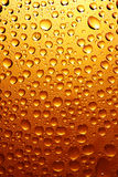 Beer drops Stock Photography