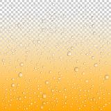 Beer drops on glass, Vector Water drops on glass. Rain drops on transparent background royalty free illustration