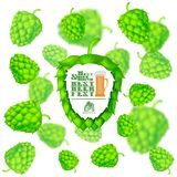 Beer festival banner in front of realistic hop cones flying on white background with depth of field effect. On white Royalty Free Stock Photo