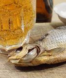 Beer with fish Royalty Free Stock Photography