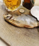 Beer with fish Royalty Free Stock Photo