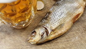 Beer and fish Stock Photography