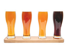Beer Flight. Stock Images