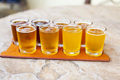 Beer Flight Stock Photography